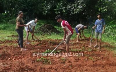 ICYM Shirthady unit towards Vegetable Cultivation